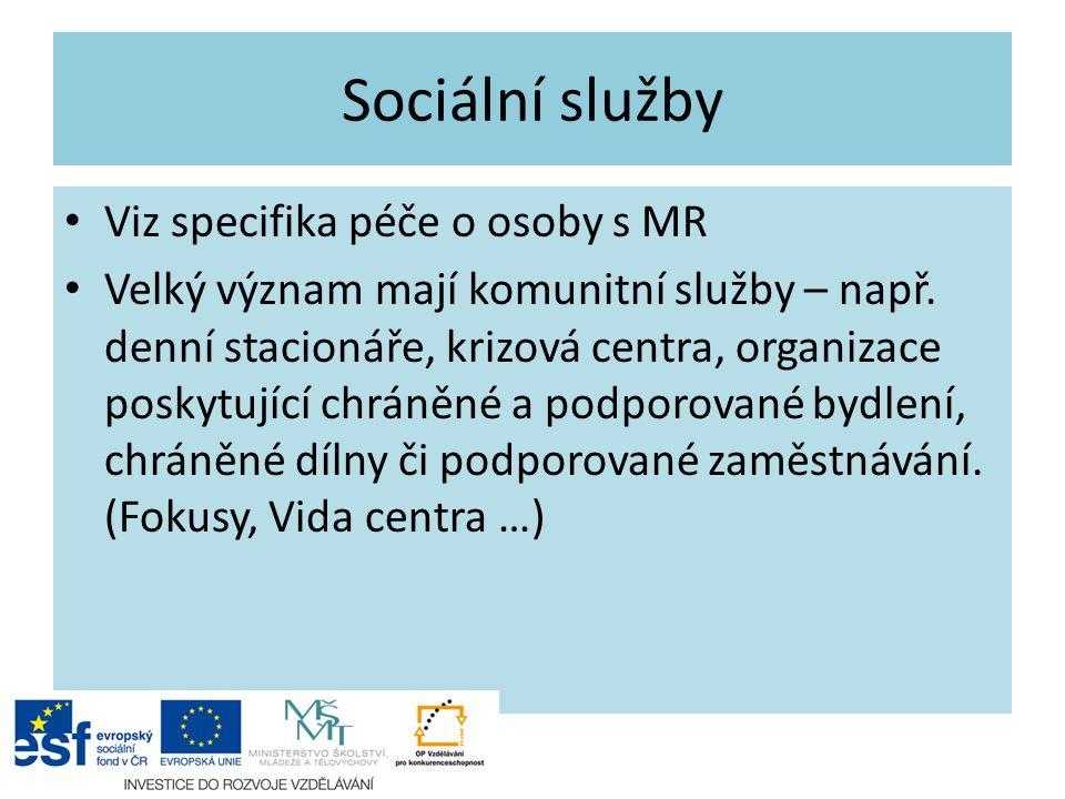 Sociální služby Viz specifika péče o osoby s MR Velký význam mají komunitní služby – např.