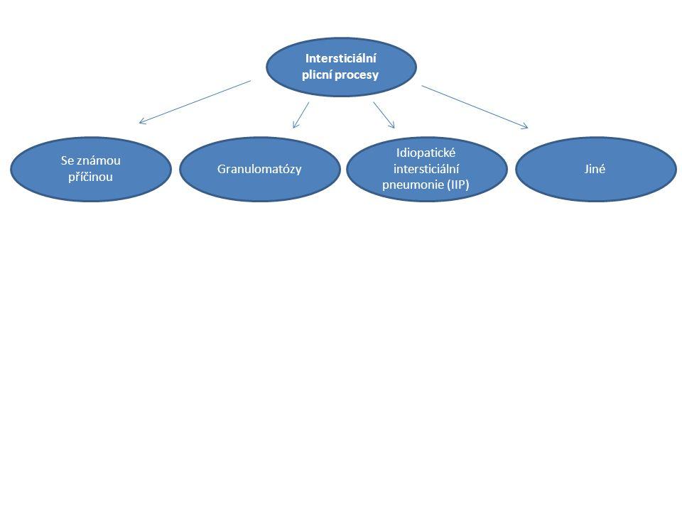 Intersticiální plicní procesy Idiopatické intersticiální pneumonie (IIP) JinéGranulomatózy Se známou příčinou