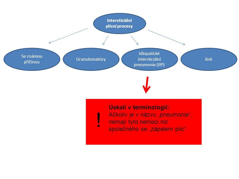 Intersticiální plicní procesy Idiopatické intersticiální pneumonie (IIP) JinéGranulomatózy Se známou příčinou .