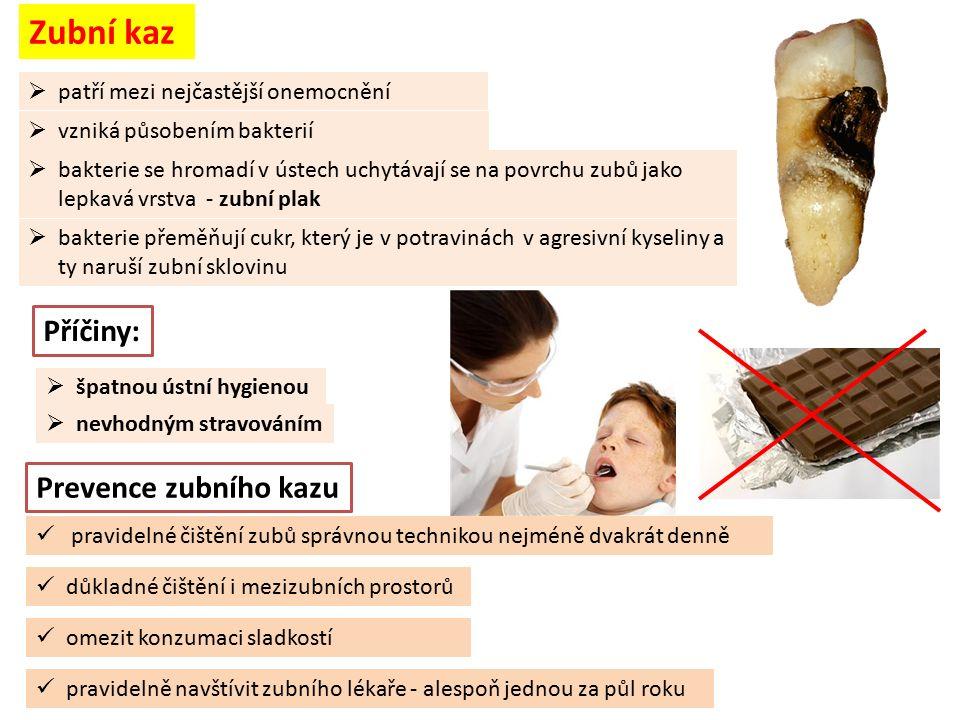 Zubní kaz  patří mezi nejčastější onemocnění Příčiny:  špatnou ústní hygienou  nevhodným stravováním Prevence zubního kazu pravidelné čištění zubů správnou technikou nejméně dvakrát denně omezit konzumaci sladkostí pravidelně navštívit zubního lékaře - alespoň jednou za půl roku  bakterie se hromadí v ústech uchytávají se na povrchu zubů jako lepkavá vrstva - zubní plak  vzniká působením bakterií  bakterie přeměňují cukr, který je v potravinách v agresivní kyseliny a ty naruší zubní sklovinu důkladné čištění i mezizubních prostorů