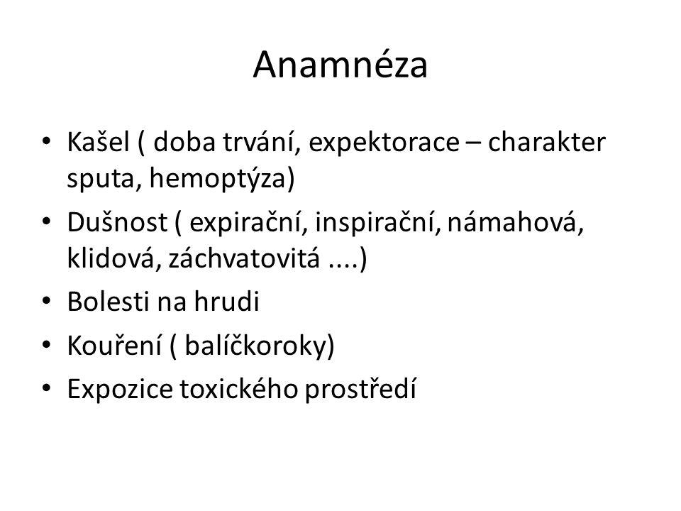 Anamnéza Kašel ( doba trvání, expektorace – charakter sputa, hemoptýza) Dušnost ( expirační, inspirační, námahová, klidová, záchvatovitá....) Bolesti na hrudi Kouření ( balíčkoroky) Expozice toxického prostředí