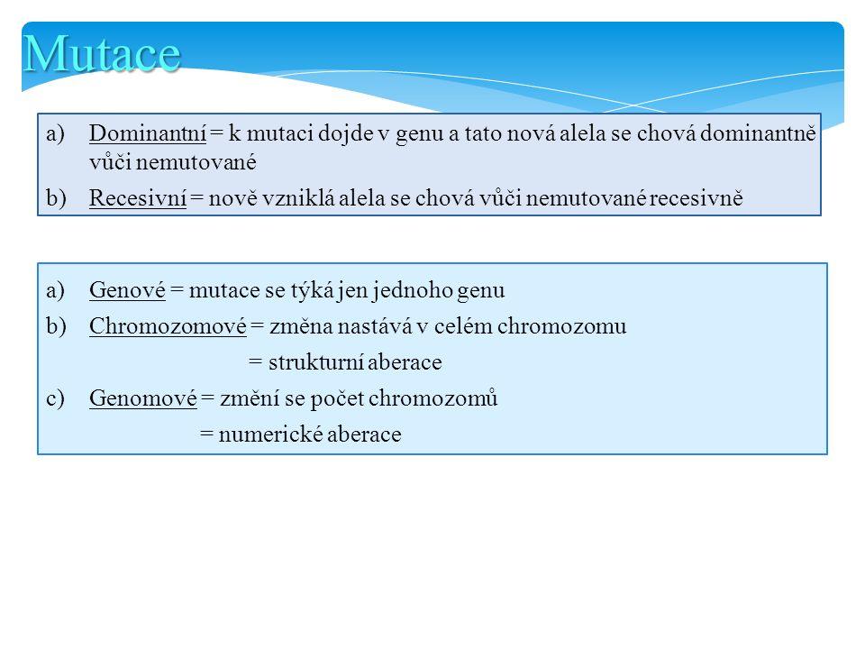 Mutace a)Genové = mutace se týká jen jednoho genu b)Chromozomové = změna nastává v celém chromozomu = strukturní aberace c)Genomové = změní se počet c