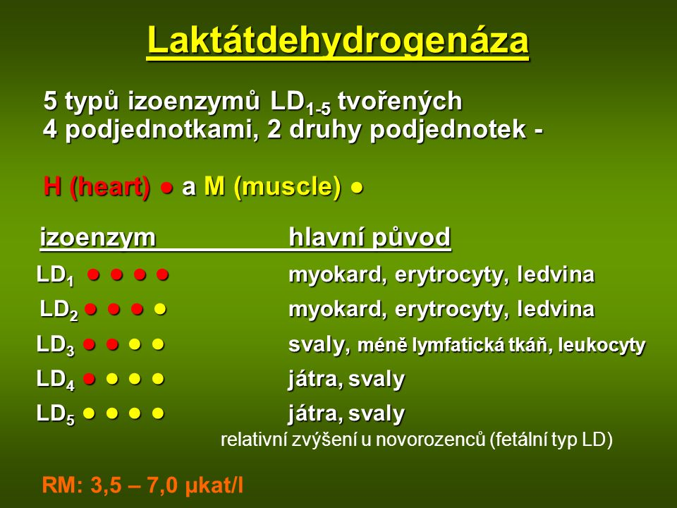 5 typů izoenzymů LD 1-5 tvořených 4 podjednotkami, 2 druhy podjednotek - H (heart) ● a M (muscle) ● izoenzymhlavní původ izoenzymhlavní původ LD 1 ● ● ● ● myokard, erytrocyty, ledvina LD 1 ● ● ● ● myokard, erytrocyty, ledvina LD 2 ● ● ● ● myokard, erytrocyty, ledvina LD 2 ● ● ● ● myokard, erytrocyty, ledvina LD 3 ● ● ● ● svaly, méně lymfatická tkáň, leukocyty LD 3 ● ● ● ● svaly, méně lymfatická tkáň, leukocyty LD 4 ● ● ● ● játra, svaly LD 4 ● ● ● ● játra, svaly LD 5 ● ● ● ● játra, svaly LD 5 ● ● ● ● játra, svaly relativní zvýšení u novorozenců (fetální typ LD) Laktátdehydrogenáza RM: 3,5 – 7,0 μkat/l