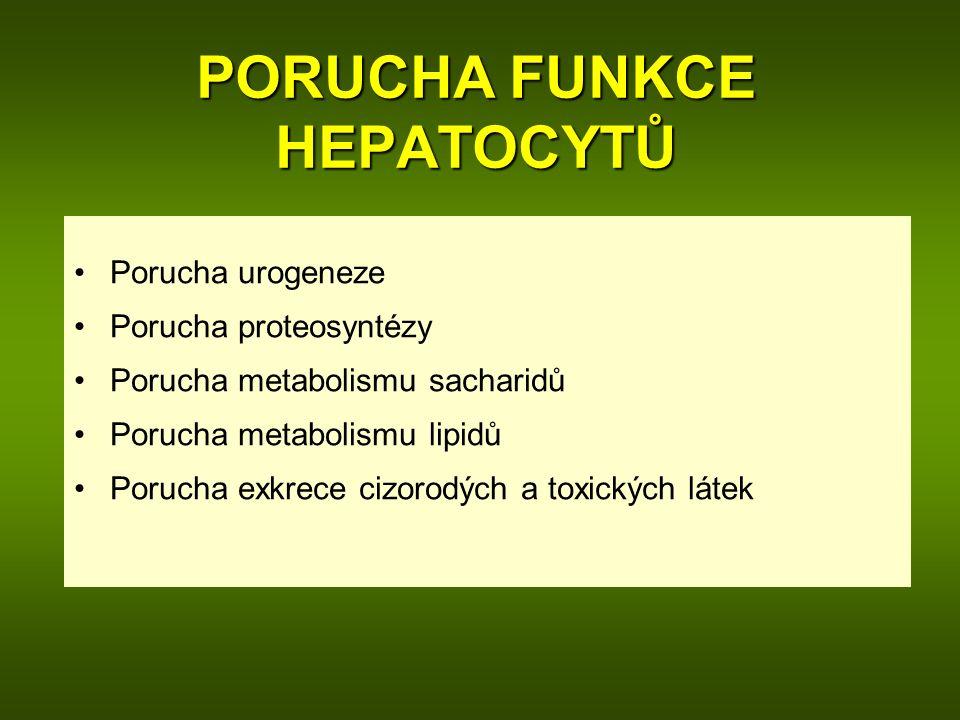 PORUCHA FUNKCE HEPATOCYTŮ Porucha urogeneze Porucha proteosyntézy Porucha metabolismu sacharidů Porucha metabolismu lipidů Porucha exkrece cizorodých