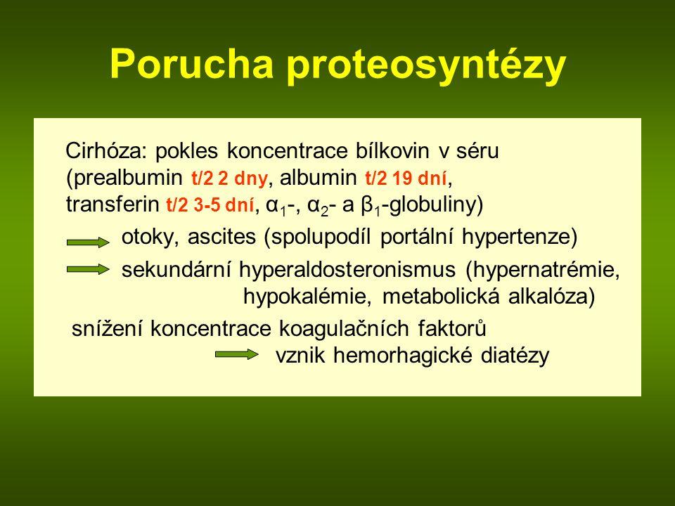 Porucha proteosyntézy Cirhóza: pokles koncentrace bílkovin v séru (prealbumin t/2 2 dny, albumin t/2 19 dní, transferin t/2 3-5 dní, α 1 -, α 2 - a β 1 -globuliny) otoky, ascites (spolupodíl portální hypertenze) sekundární hyperaldosteronismus (hypernatrémie, hypokalémie, metabolická alkalóza) snížení koncentrace koagulačních faktorů vznik hemorhagické diatézy