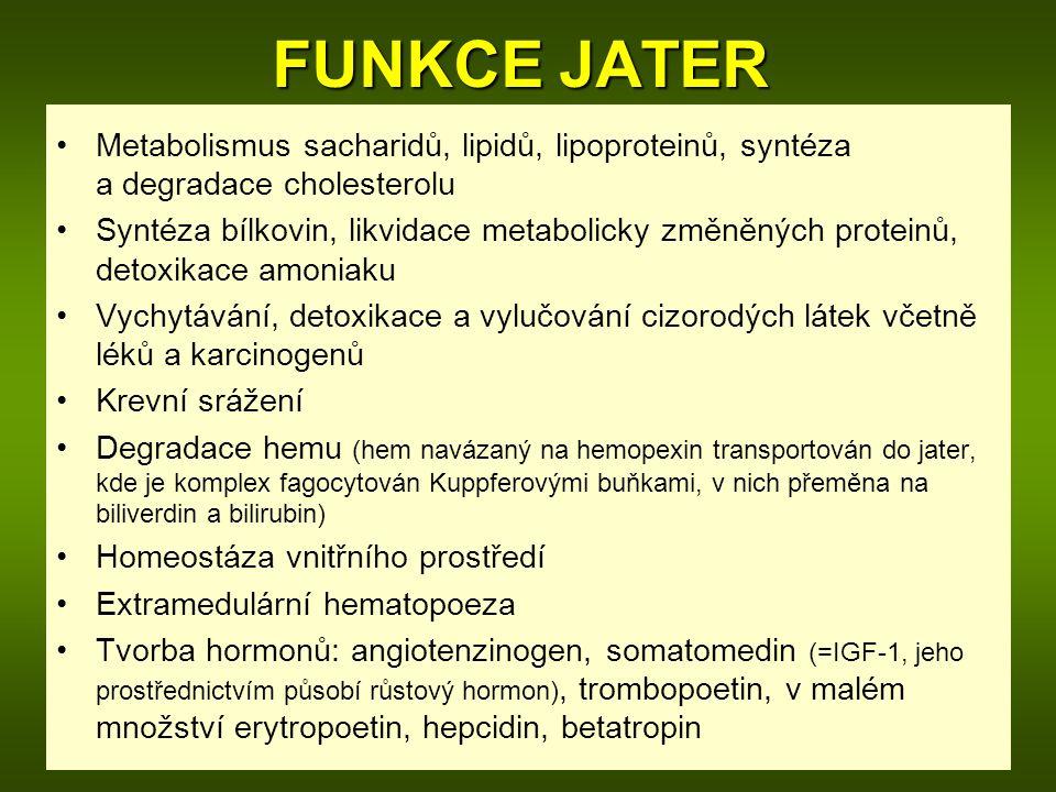 FUNKCE JATER Metabolismus sacharidů, lipidů, lipoproteinů, syntéza a degradace cholesterolu Syntéza bílkovin, likvidace metabolicky změněných proteinů, detoxikace amoniaku Vychytávání, detoxikace a vylučování cizorodých látek včetně léků a karcinogenů Krevní srážení Degradace hemu (hem navázaný na hemopexin transportován do jater, kde je komplex fagocytován Kuppferovými buňkami, v nich přeměna na biliverdin a bilirubin) Homeostáza vnitřního prostředí Extramedulární hematopoeza Tvorba hormonů: angiotenzinogen, somatomedin (=IGF-1, jeho prostřednictvím působí růstový hormon), trombopoetin, v malém množství erytropoetin, hepcidin, betatropin
