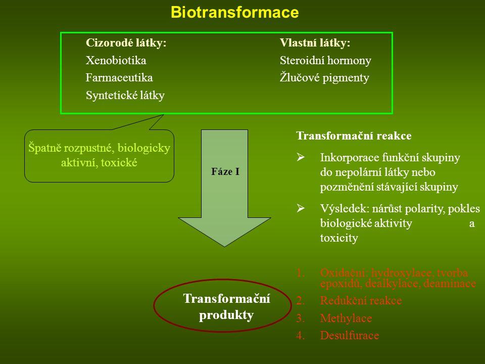 Biotransformace Cizorodé látky:Vlastní látky: XenobiotikaSteroidní hormony FarmaceutikaŽlučové pigmenty Syntetické látky Fáze I Transformační produkty