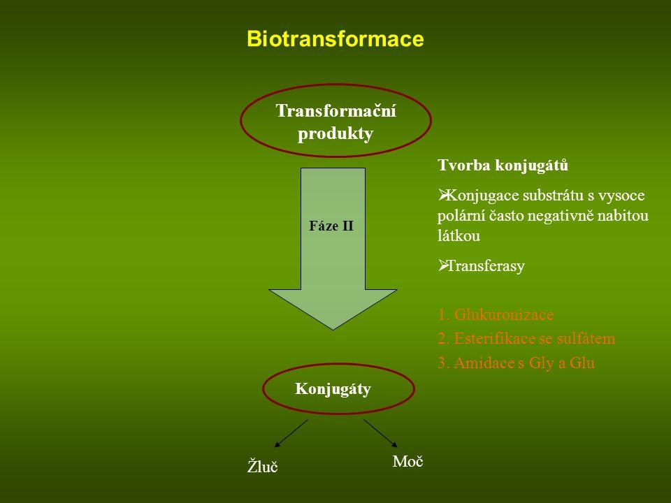 Biotransformace Transformační produkty Fáze II Konjugáty Žluč Moč Tvorba konjugátů  Konjugace substrátu s vysoce polární často negativně nabitou látk