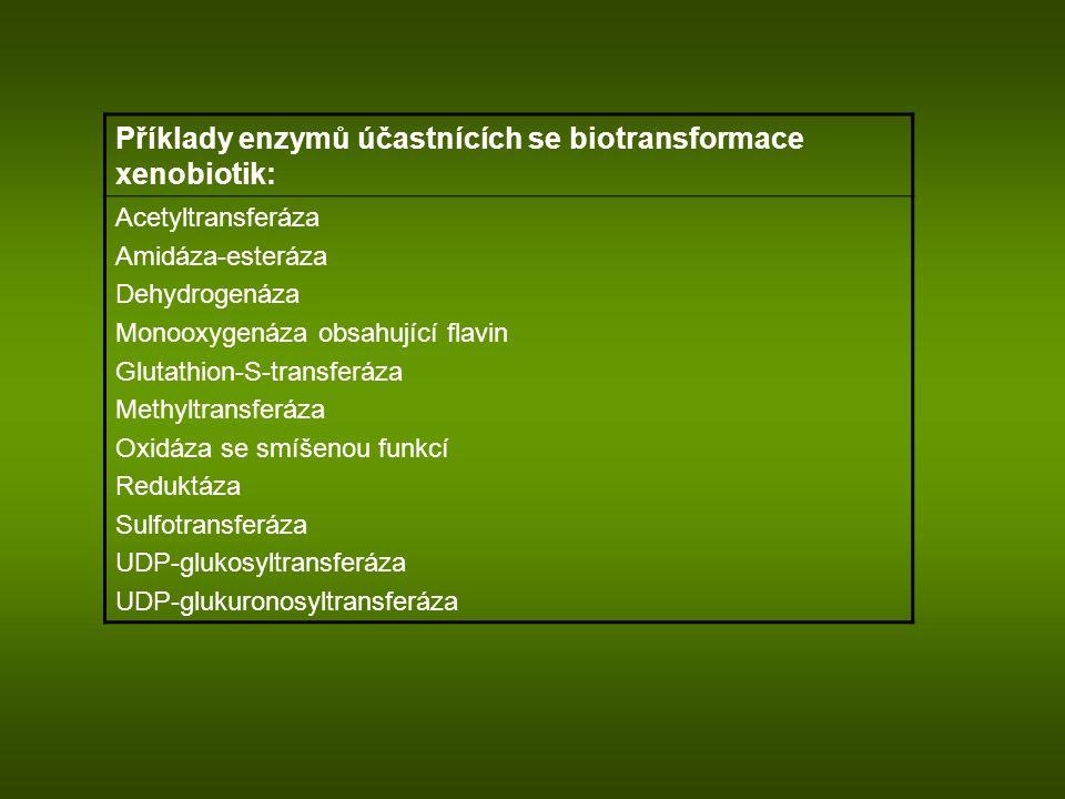 Příklady enzymů účastnících se biotransformace xenobiotik: Acetyltransferáza Amidáza-esteráza Dehydrogenáza Monooxygenáza obsahující flavin Glutathion