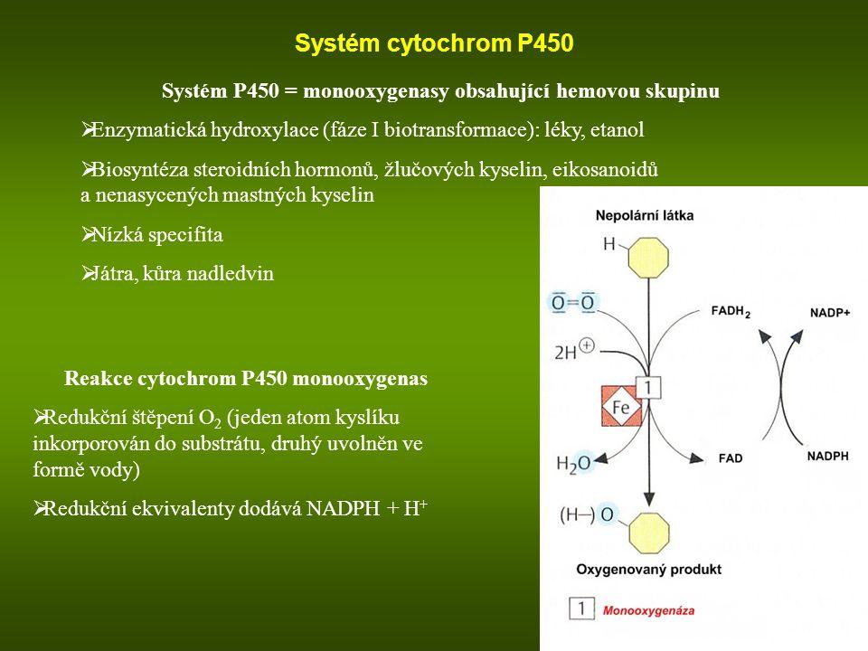 Systém cytochrom P450 Systém P450 = monooxygenasy obsahující hemovou skupinu  Enzymatická hydroxylace (fáze I biotransformace): léky, etanol  Biosyn