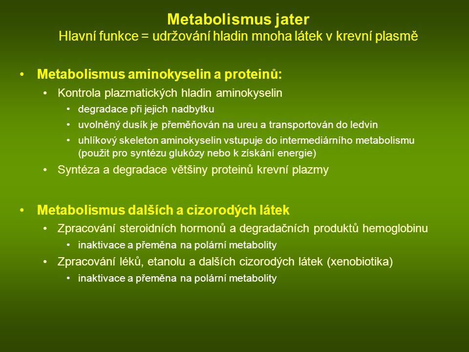 Metabolismus jater Hlavní funkce = udržování hladin mnoha látek v krevní plasmě Metabolismus aminokyselin a proteinů: Kontrola plazmatických hladin aminokyselin degradace při jejich nadbytku uvolněný dusík je přeměňován na ureu a transportován do ledvin uhlíkový skeleton aminokyselin vstupuje do intermediárního metabolismu (použit pro syntézu glukózy nebo k získání energie) Syntéza a degradace většiny proteinů krevní plazmy Metabolismus dalších a cizorodých látek Zpracování steroidních hormonů a degradačních produktů hemoglobinu inaktivace a přeměna na polární metabolity Zpracování léků, etanolu a dalších cizorodých látek (xenobiotika) inaktivace a přeměna na polární metabolity