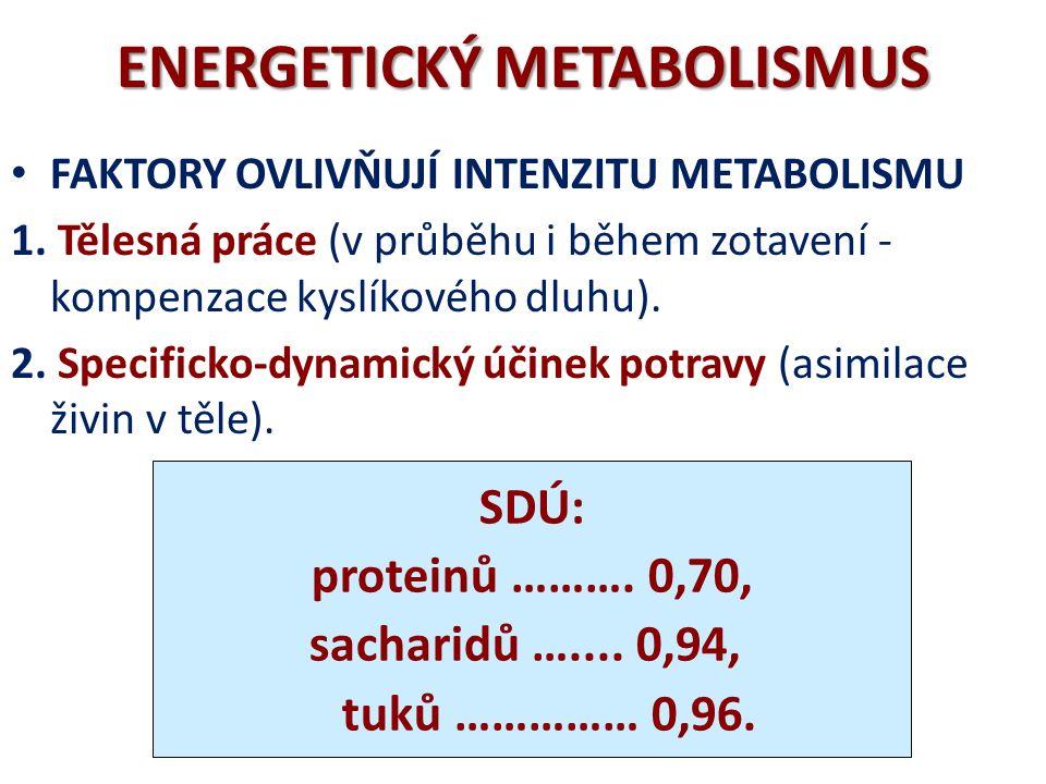 ENERGETICKÝ METABOLISMUS RQ celkem = 0,82 RQ sacharidů = 1,00 RQ tuků = 0,70 RQ proteinů = 0,82 RESPIRAČNÍ KVOCIENT (RQ) CO 2 /O 2 za jednotku času za ustáleného stavu