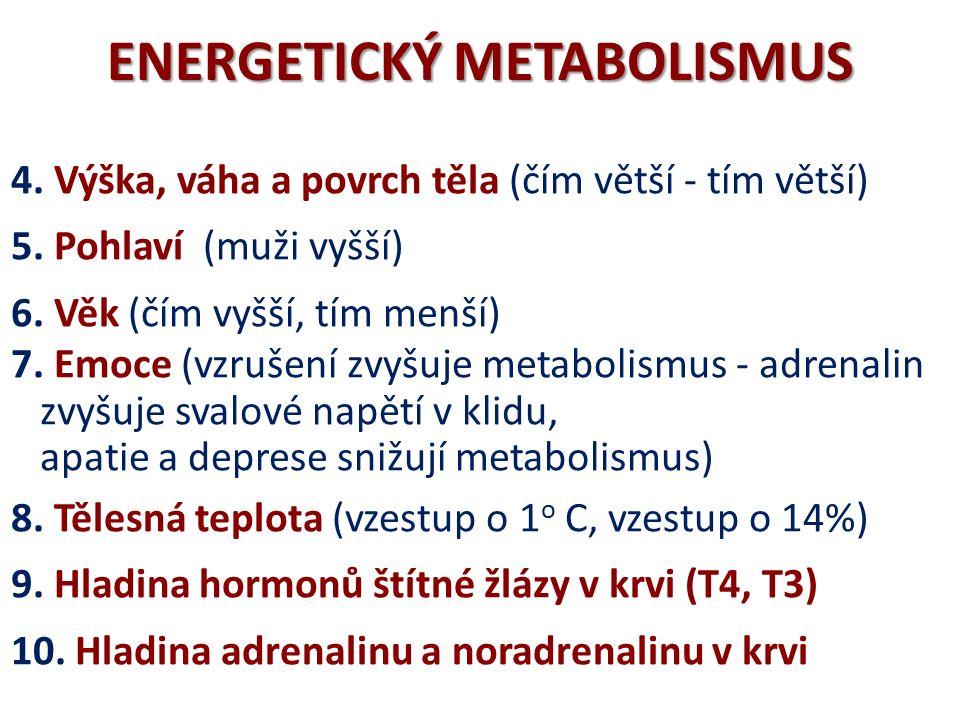 ENERGETICKÝ METABOLISMUS INTENZITA METABOLISMU 3.