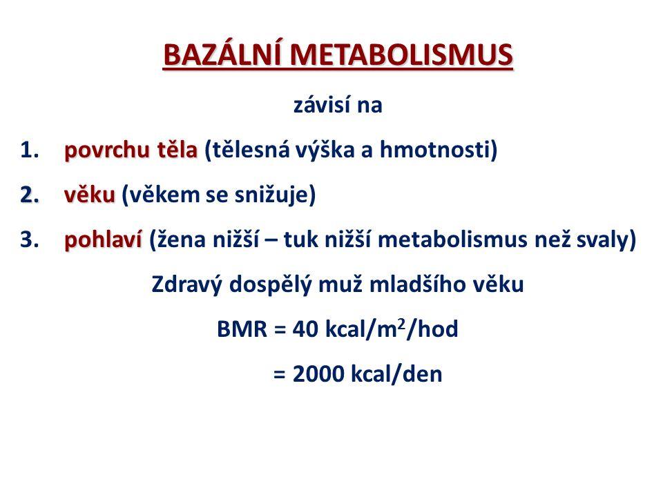 BAZÁLNÍ METABOLISMUS (BMR) ENERGIE pro udržení všech vitálních funkcí