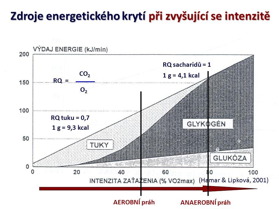 AEROBNÍ FOSFORYLACE ZISK 36 ATP