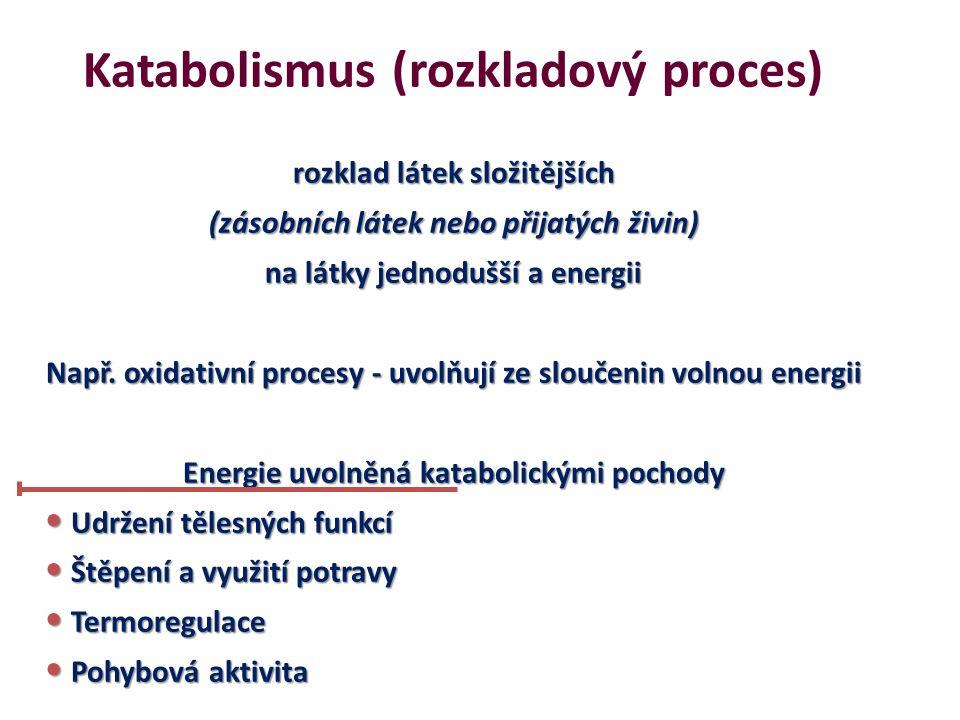 Anabolismus (výstavbový proces) z látek jednodušších vznikají látky složitější (stavební látky – bílkoviny a zásobní látky – glykogen a triglyceridy) Vyžadují dodávání energie, která se při nich spotřebovává Obnovování živé hmoty Vytváření energetických zásob (pro mechanickou práci, transport membránou, atd.) Vytváření látek potřebných k řízení (např.