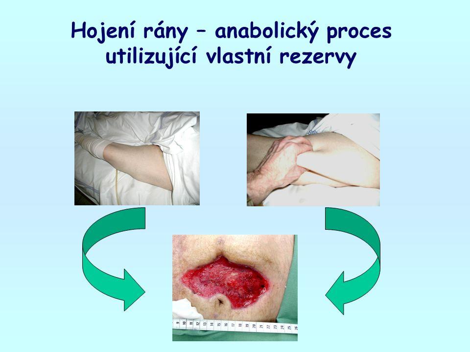 Hojení rány – anabolický proces utilizující vlastní rezervy