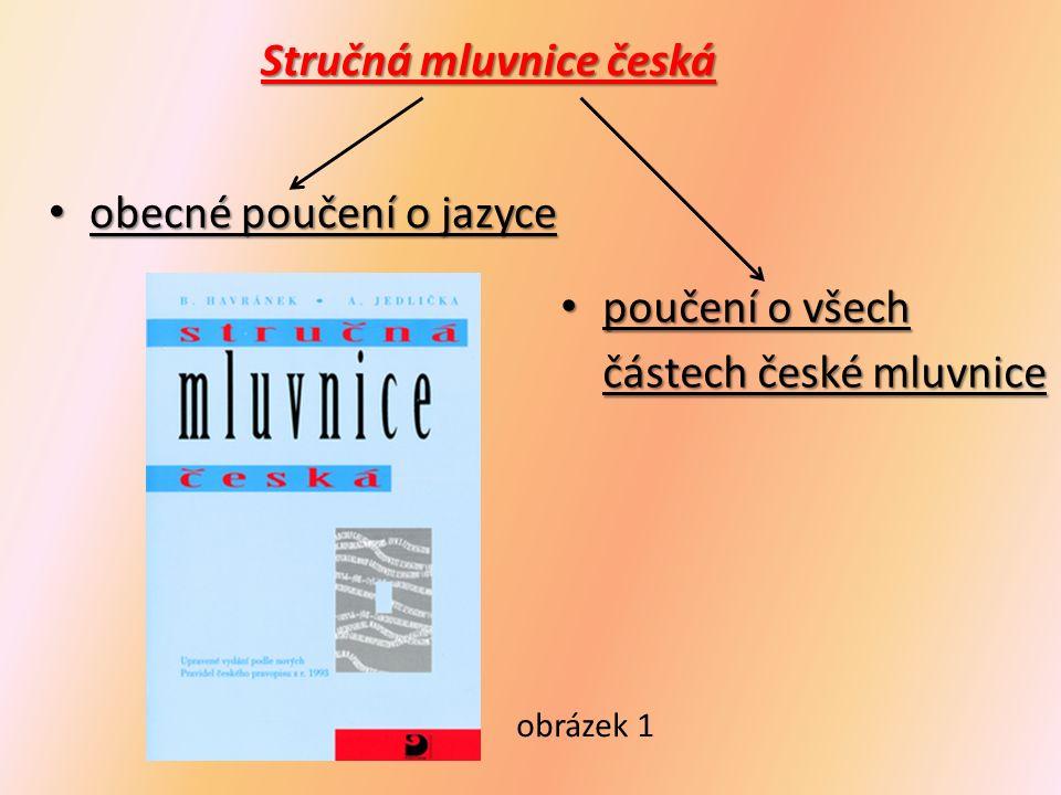 Přehledná mluvnice češtiny pro základní školy přehled základních přehled základních mluvnických pravidel obrázek 2