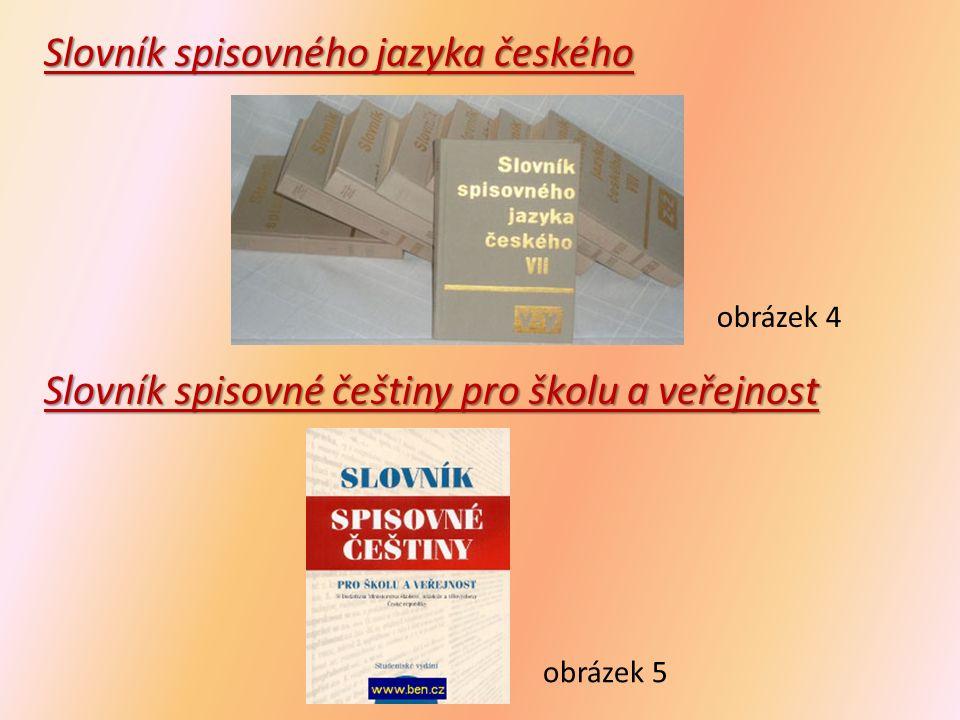 Slovník cizích slov obsahuje slova cizího významu, slova přejatá obrázek 6