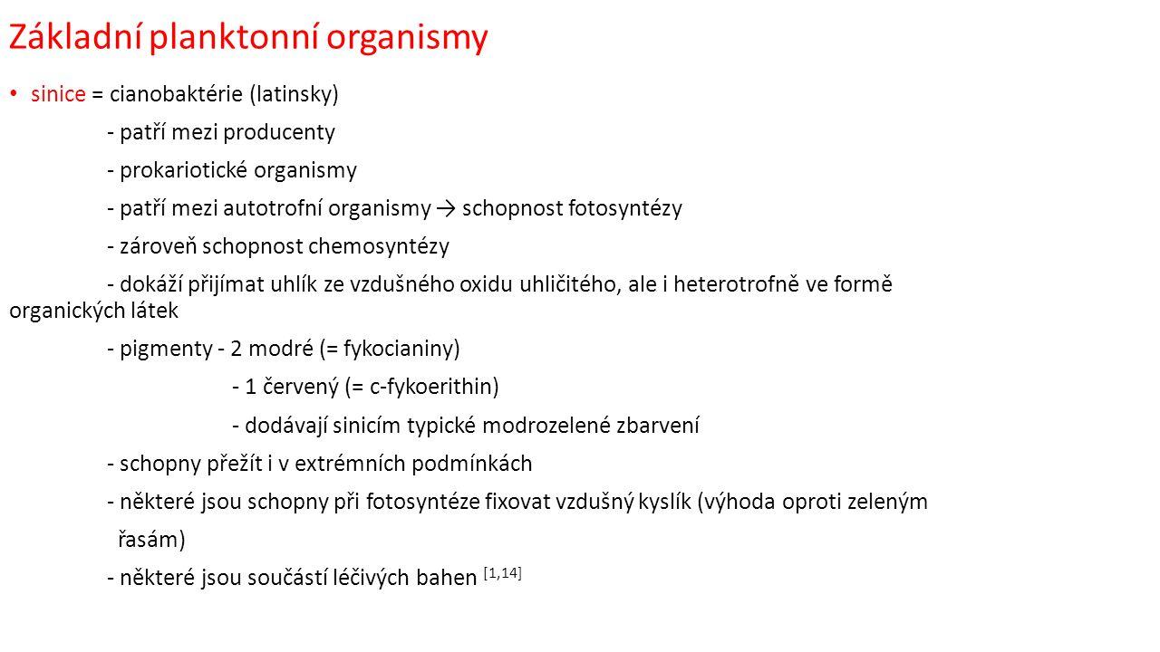 Základní planktonní organismy sinice = cianobaktérie (latinsky) - patří mezi producenty - prokariotické organismy - patří mezi autotrofní organismy → schopnost fotosyntézy - zároveň schopnost chemosyntézy - dokáží přijímat uhlík ze vzdušného oxidu uhličitého, ale i heterotrofně ve formě organických látek - pigmenty - 2 modré (= fykocianiny) - 1 červený (= c-fykoerithin) - dodávají sinicím typické modrozelené zbarvení - schopny přežít i v extrémních podmínkách - některé jsou schopny při fotosyntéze fixovat vzdušný kyslík (výhoda oproti zeleným řasám) - některé jsou součástí léčivých bahen [1,14]