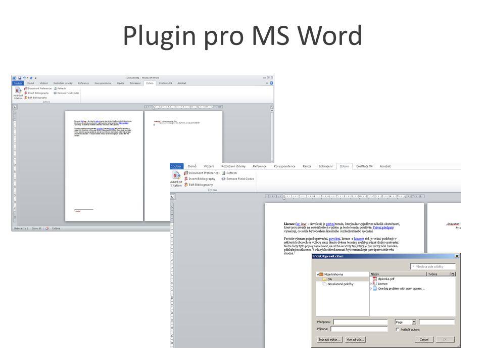 Plugin pro MS Word
