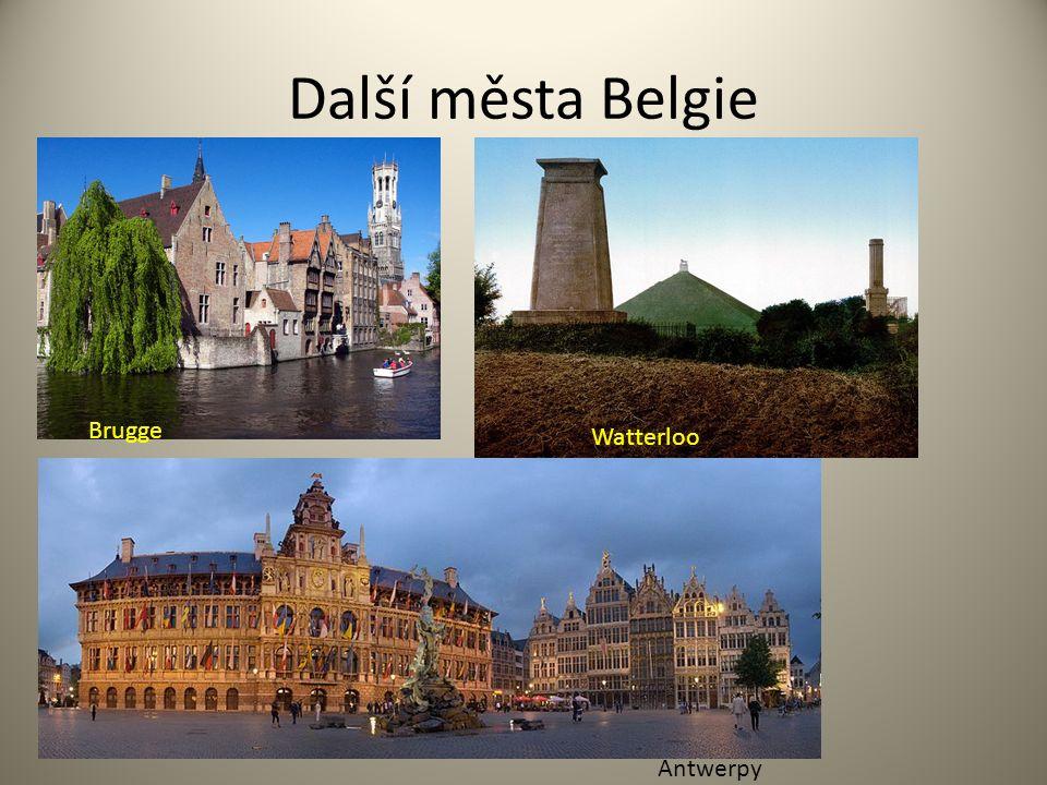 Další města Belgie Brugge Watterloo Antwerpy