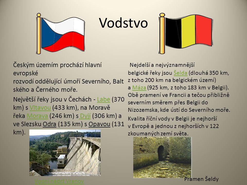 Vodstvo Českým územím prochází hlavní evropské rozvodí oddělující úmoří Severního, Balt ského a Černého moře. Největší řeky jsou v Čechách - Labe (370