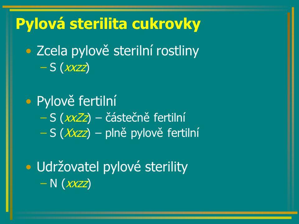 Pylová sterilita cukrovky Zcela pylově sterilní rostliny –S (xxzz) Pylově fertilní –S (xxZz) – částečně fertilní –S (Xxzz) – plně pylově fertilní Udržovatel pylové sterility –N (xxzz)