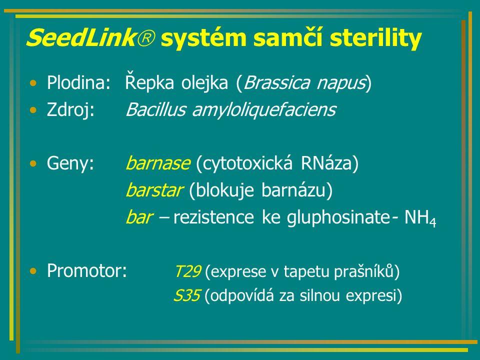 SeedLink  systém samčí sterility Plodina:Řepka olejka (Brassica napus) Zdroj:Bacillus amyloliquefaciens Geny: barnase (cytotoxická RNáza) barstar (blokuje barnázu) bar – rezistence ke gluphosinate- NH 4 Promotor: T29 (exprese v tapetu prašníků) S35 (odpovídá za silnou expresi)