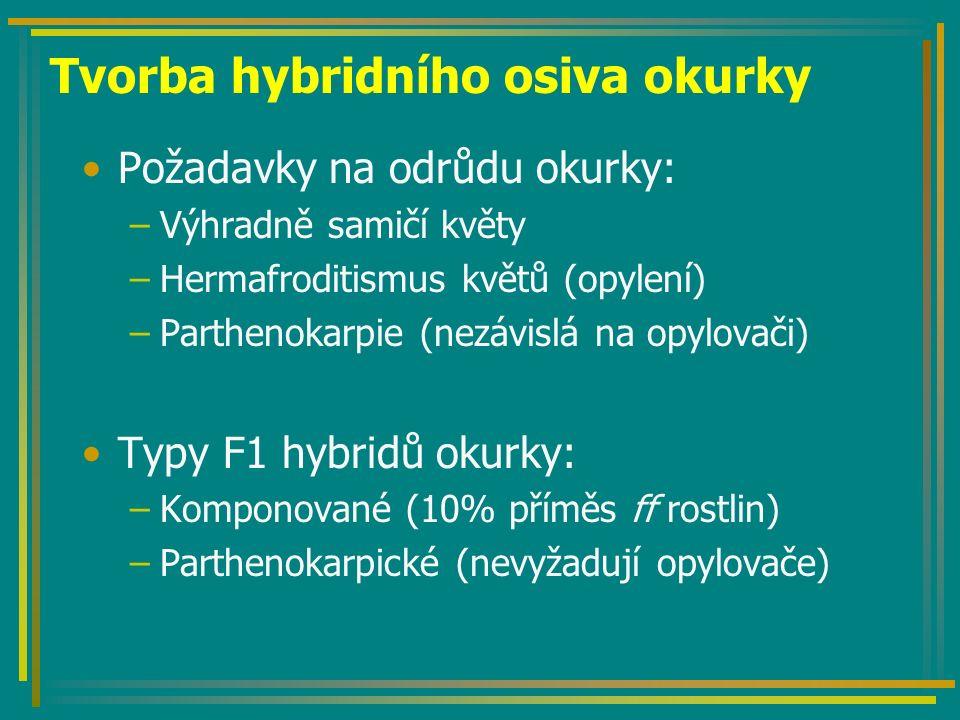 Tvorba hybridního osiva okurky Požadavky na odrůdu okurky: –Výhradně samičí květy –Hermafroditismus květů (opylení) –Parthenokarpie (nezávislá na opylovači) Typy F1 hybridů okurky: –Komponované (10% příměs ff rostlin) –Parthenokarpické (nevyžadují opylovače)