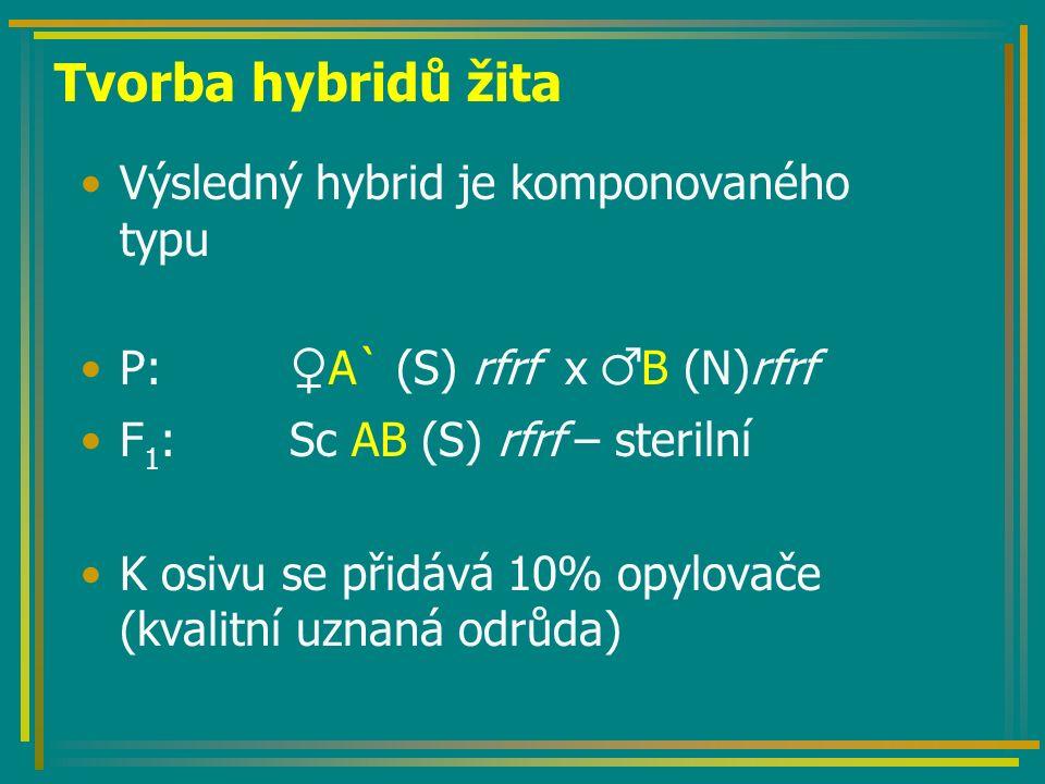Tvorba hybridů cukrovky Požadavky: –Objemová plodina (není nutná produkce semen) –Z hlediska technologie setí – jednoklíčkové osivo Hybridy: –Diploidní (2n=18) –Triploidní (3n=27) Linie: –Pylově sterilní linie –Obnovitel fertility –Opylovač (2n nebo 4n)