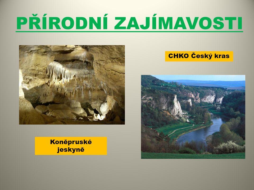 PŘÍRODNÍ ZAJÍMAVOSTI Koněpruské jeskyně CHKO Český kras