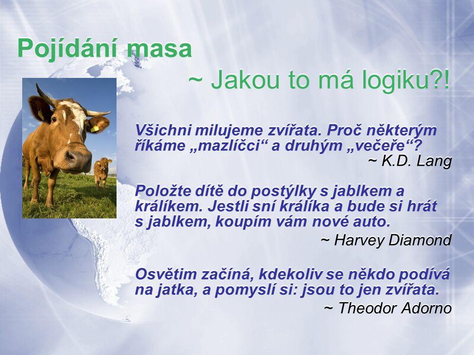 Pojídání masa ~ Jakou to má logiku . Všichni milujeme zvířata.