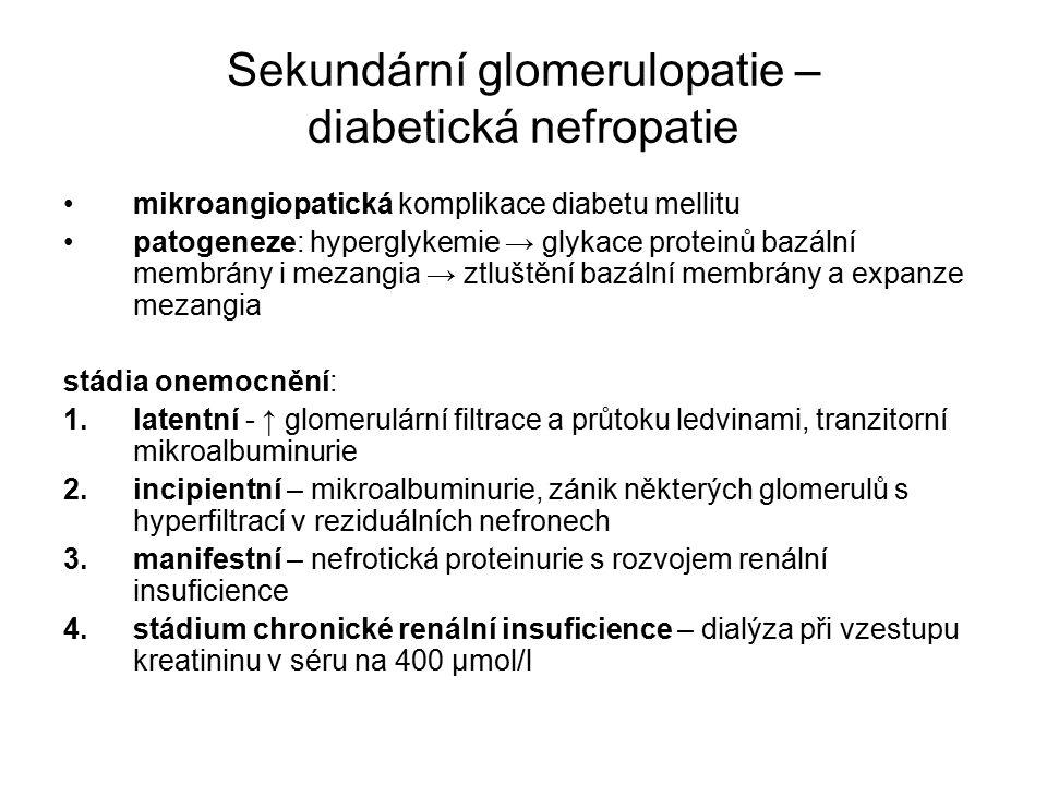 Sekundární glomerulopatie – diabetická nefropatie mikroangiopatická komplikace diabetu mellitu patogeneze: hyperglykemie → glykace proteinů bazální membrány i mezangia → ztluštění bazální membrány a expanze mezangia stádia onemocnění: 1.latentní - ↑ glomerulární filtrace a průtoku ledvinami, tranzitorní mikroalbuminurie 2.incipientní – mikroalbuminurie, zánik některých glomerulů s hyperfiltrací v reziduálních nefronech 3.manifestní – nefrotická proteinurie s rozvojem renální insuficience 4.stádium chronické renální insuficience – dialýza při vzestupu kreatininu v séru na 400 µmol/l