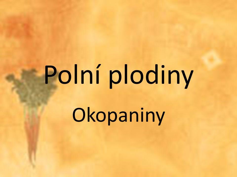 Polní plodiny Okopaniny