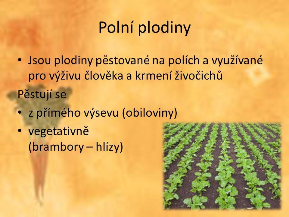 Polní plodiny Jsou plodiny pěstované na polích a využívané pro výživu člověka a krmení živočichů Pěstují se z přímého výsevu (obiloviny) vegetativně (brambory – hlízy)