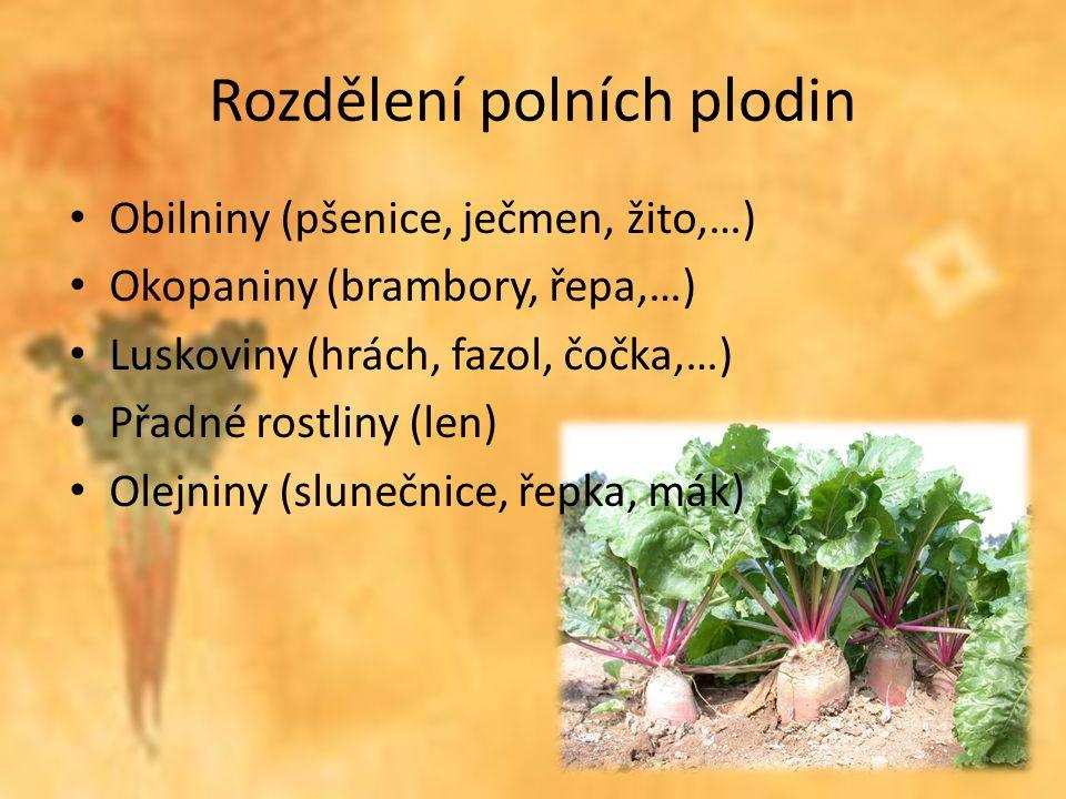 Zdroje Pěstitelství pro 6.– 9. ročník, R.