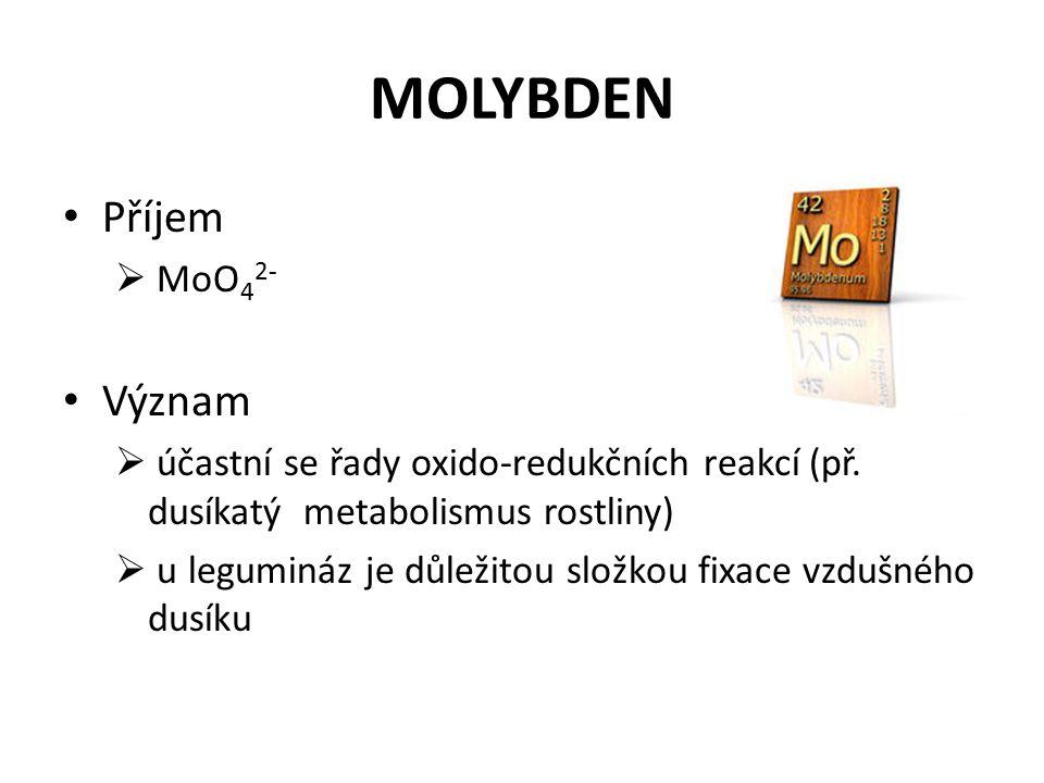 MOLYBDEN Příjem  MoO 4 2- Význam  účastní se řady oxido-redukčních reakcí (př.