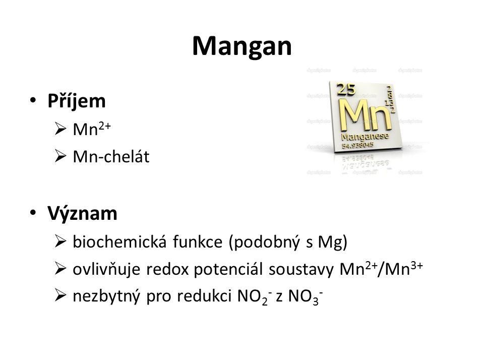 Mangan Příjem  Mn 2+  Mn-chelát Význam  biochemická funkce (podobný s Mg)  ovlivňuje redox potenciál soustavy Mn 2+ /Mn 3+  nezbytný pro redukci NO 2 - z NO 3 -