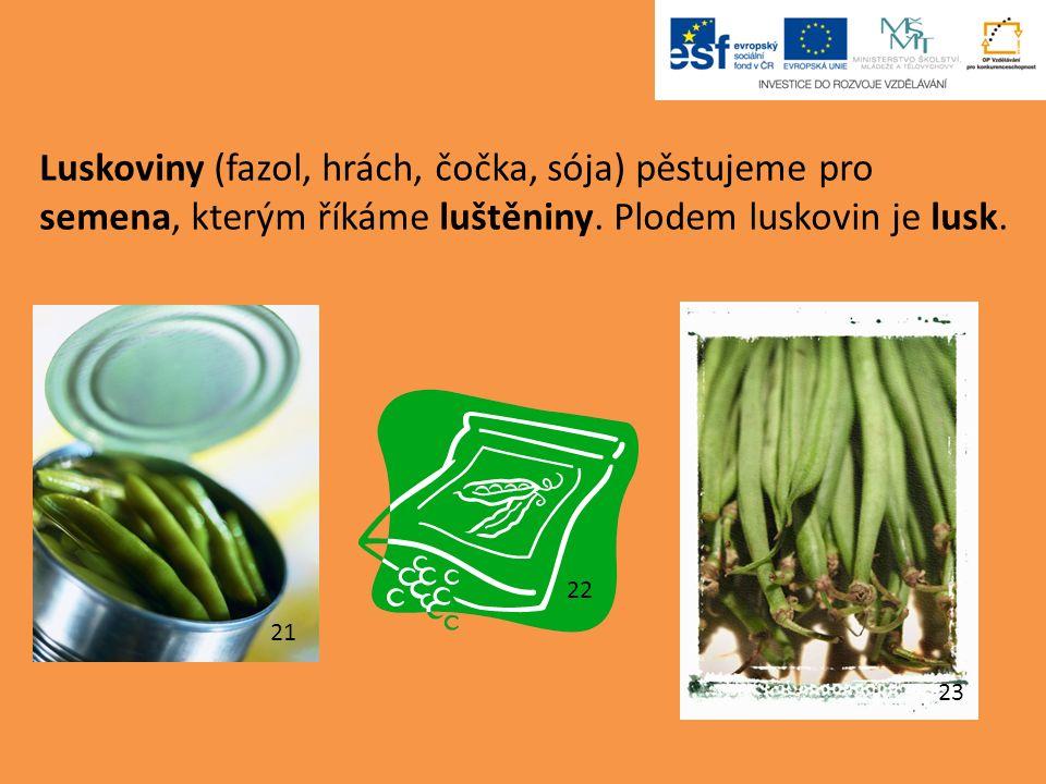 Luskoviny (fazol, hrách, čočka, sója) pěstujeme pro semena, kterým říkáme luštěniny.