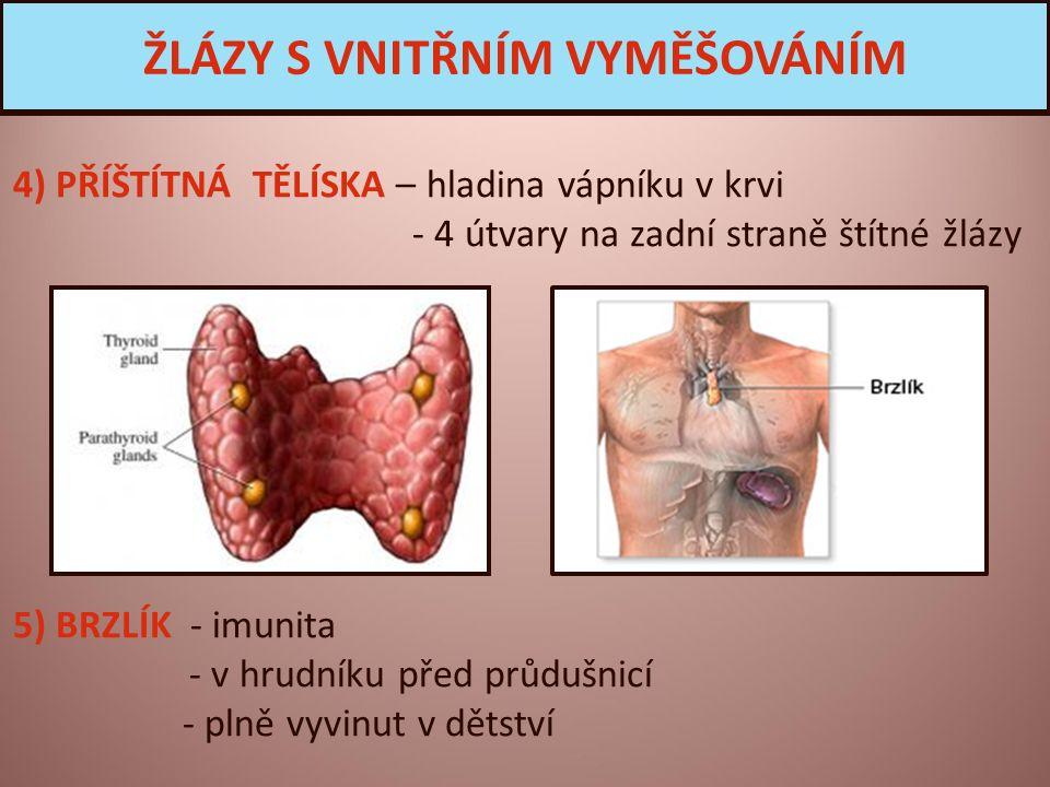 4) PŘÍŠTÍTNÁ TĚLÍSKA – hladina vápníku v krvi - 4 útvary na zadní straně štítné žlázy 5) BRZLÍK - imunita - v hrudníku před průdušnicí - plně vyvinut v dětství ŽLÁZY S VNITŘNÍM VYMĚŠOVÁNÍM
