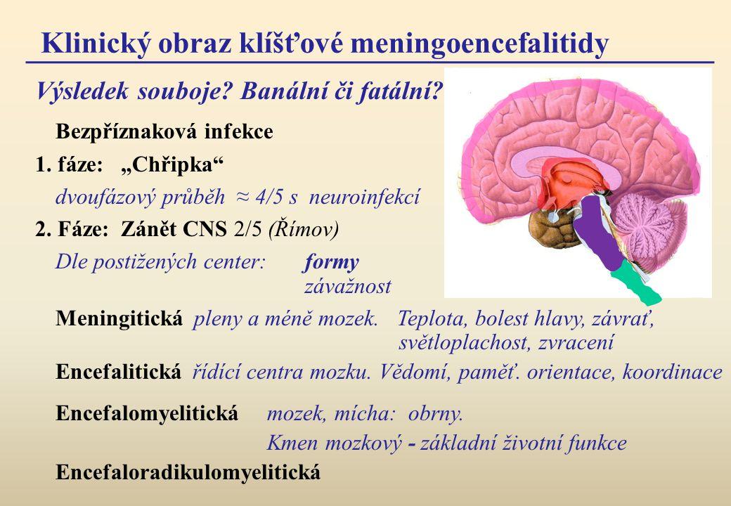 Klinický obraz klíšťové meningoencefalitidy Bezpříznaková infekce 1.