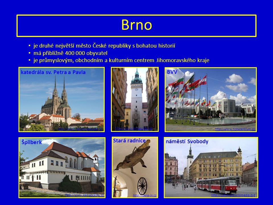 Brno je druhé největší město České republiky s bohatou historií má přibližně 400 000 obyvatel je průmyslovým, obchodním a kulturním centrem Jihomoravského kraje http://www.navstevapapeze.cz http://www.kampocesku.cz http://www.bobycentrum.cz http://commons.wikimedia.org http://www.brnoguide.net http://zena-in.cz katedrála sv.