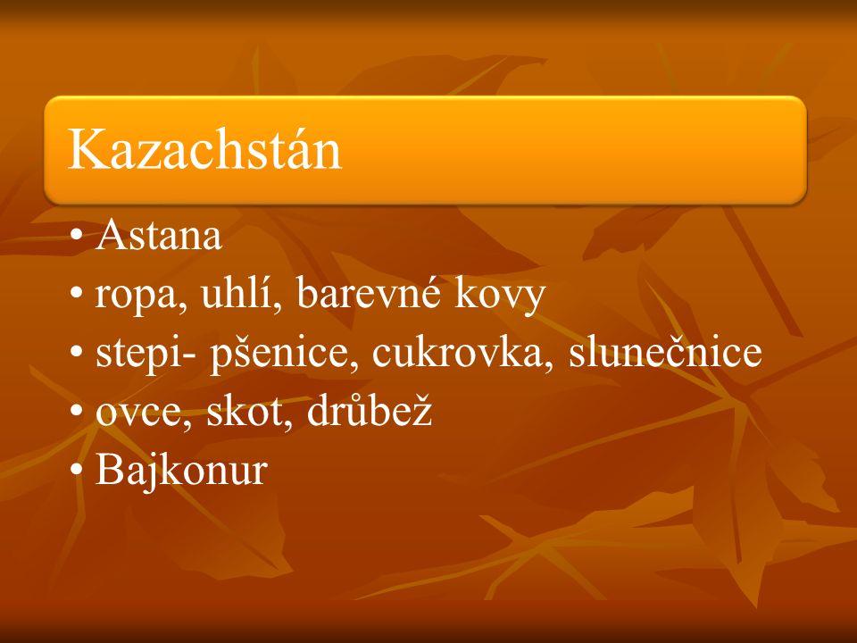 Kazachstán Astana ropa, uhlí, barevné kovy stepi- pšenice, cukrovka, slunečnice ovce, skot, drůbež Bajkonur