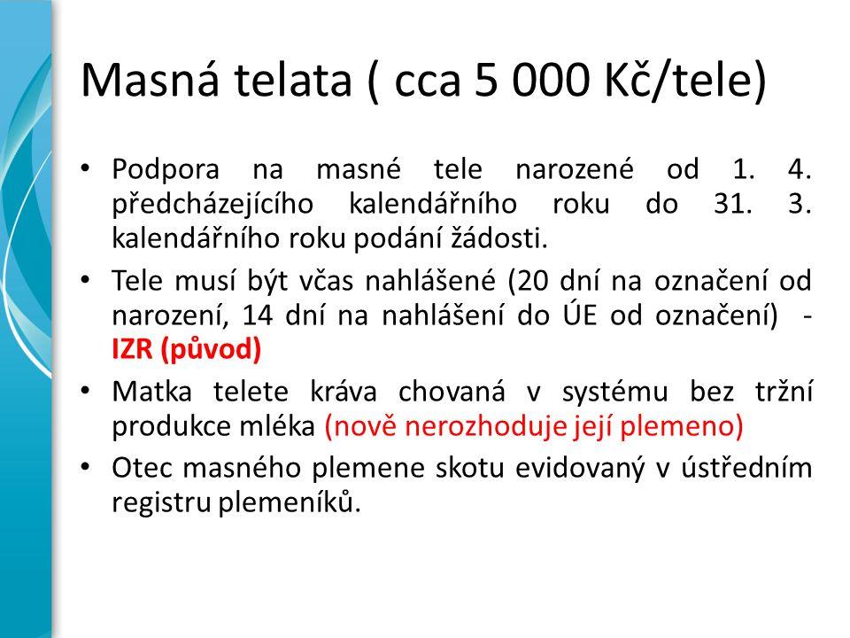 Masná telata ( cca 5 000 Kč/tele) Podpora na masné tele narozené od 1. 4. předcházejícího kalendářního roku do 31. 3. kalendářního roku podání žádosti