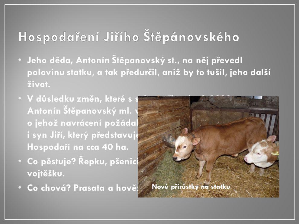 Jeho děda, Antonín Štěpanovský st., na něj převedl polovinu statku, a tak předurčil, aniž by to tušil, jeho další život.