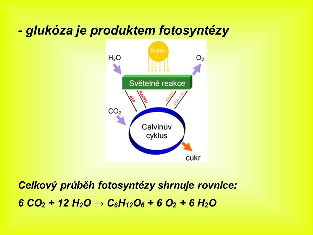- glukóza je produktem fotosyntézy Celkový průběh fotosyntézy shrnuje rovnice: 6 CO 2 + 12 H 2 O → C 6 H 12 O 6 + 6 O 2 + 6 H 2 O