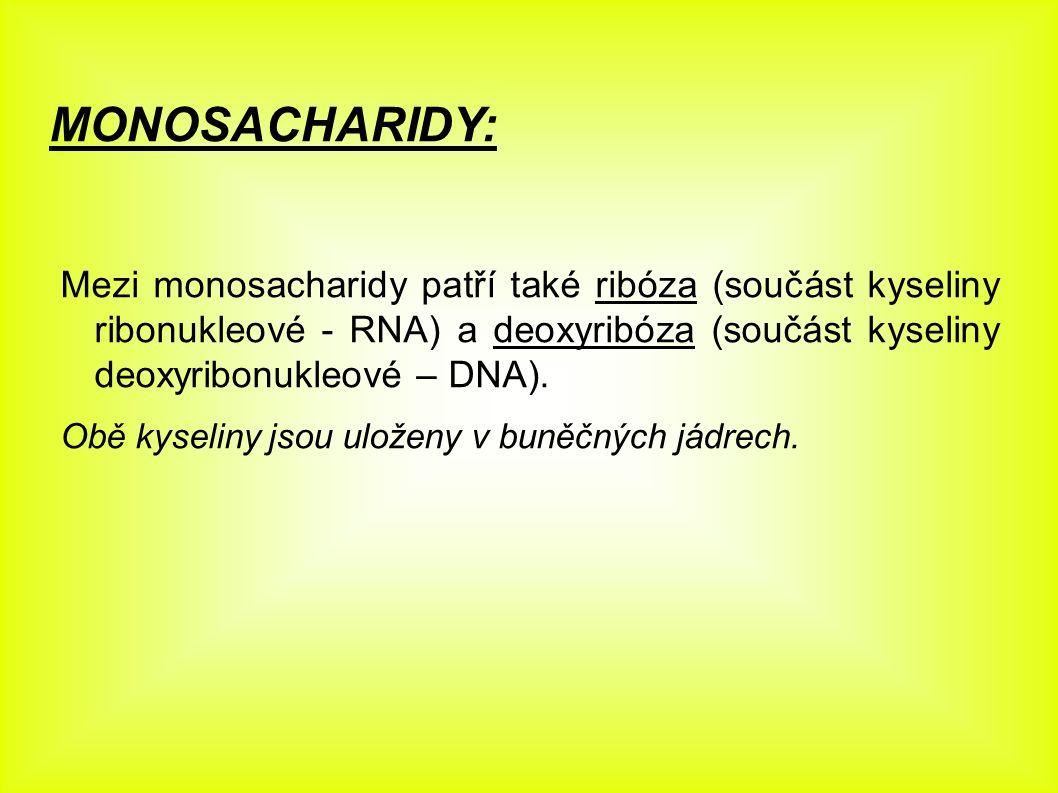 MONOSACHARIDY: Mezi monosacharidy patří také ribóza (součást kyseliny ribonukleové - RNA) a deoxyribóza (součást kyseliny deoxyribonukleové – DNA). Ob