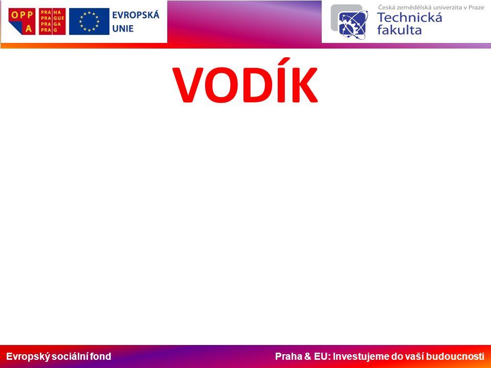 Evropský sociální fond Praha & EU: Investujeme do vaší budoucnosti VODÍK