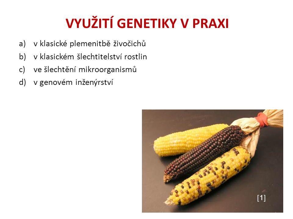 VYUŽITÍ GENETIKY V PRAXI a)v klasické plemenitbě živočichů b)v klasickém šlechtitelství rostlin c)ve šlechtění mikroorganismů d)v genovém inženýrství